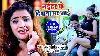 आ गया गारंटी से रुला देने वाला बेवफाई का दर्द भरा गीत - एक बार ज़रूर सुने - Bharat Bhojpuriya