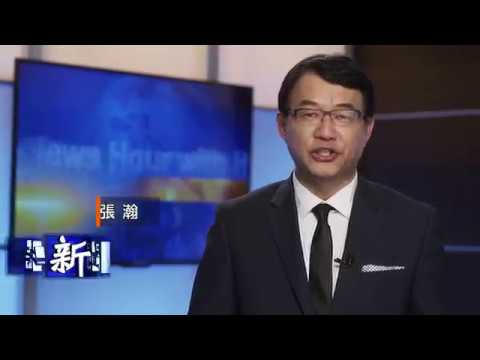 新聞大特寫 News Hour with Harry Chang