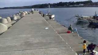 三戸浜堤防・三浦半島