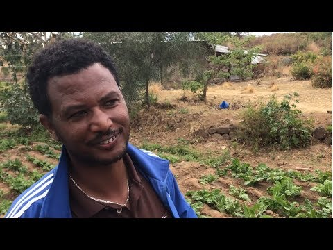 Climate-Smart Agriculture at an Ethiopian Farmers Training Center