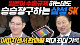 일본이 수출규제 하는데도 승승장구하는 삼성, SK 이미지센서 판매량 역대 최대 기록 l Image sensor [ENG SUB]