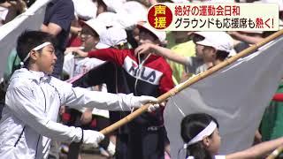 【HTBニュース】応援席からの声援も熱く!札幌の小学校で運動会