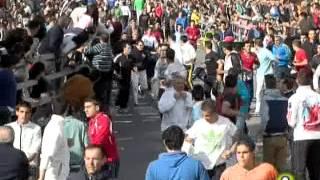 V Toro de la Feria - Anticuario - Medina del Campo 2013