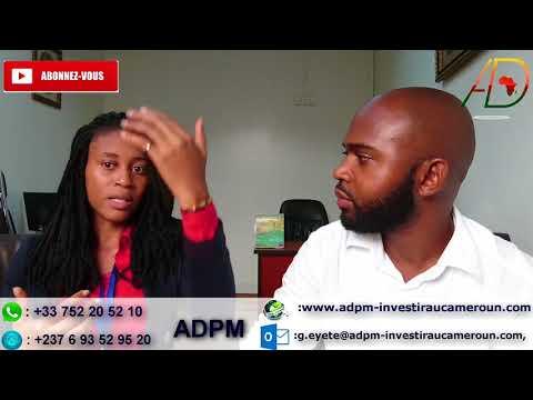 Buzz:Comment acheter moins cher immobilier/terrain Cameroun