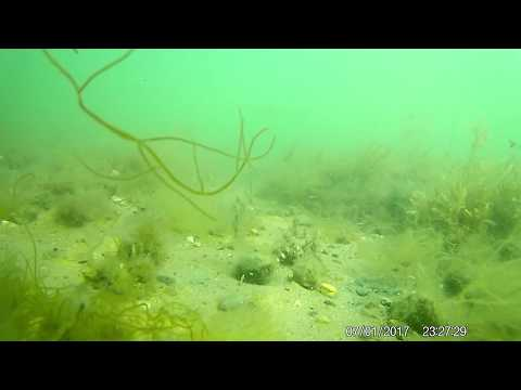 Under Water Seafloor Camera