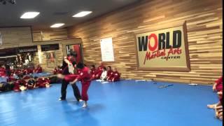 2016 World Martial Arts Center Board Breaking Test