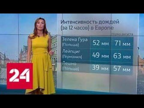 'Погода 24': на