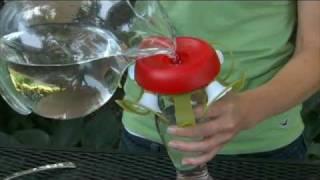 Perky-Pet® Funnel-Fill 16 oz. Glass Hummingbird Feeder