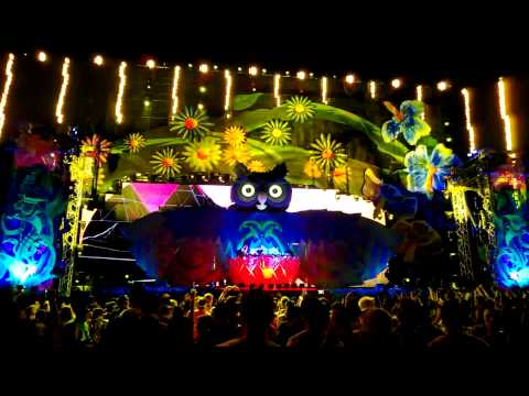 EDC Las Vegas 2013 Cedric Gervais Summertime Sadness