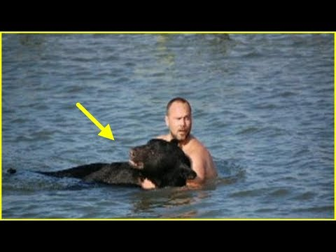 Guy Sees A Dangerous Predator About To Drown And Makes A Decision No One Else Would