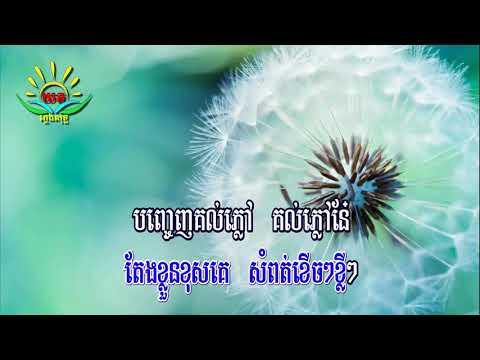 នារីសម័យថ្មី ៖ ភ្លេងសុទ្ធ Neary Samay Thmey Karaoke
