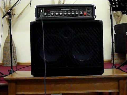 Peterson PB150 Bass Amp Head & Carvin 2x10 Bass Cab Speaker ...