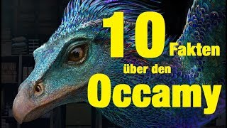 10 FAKTEN über den OCCAMY