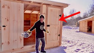 This 1 Skill will Save me $1000s (Custom Doors) Chicken Coop Build