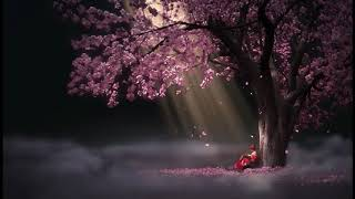 #Meditation#BeautifulRelaxingMusicForStressRelief #MeditationMusic#SleepMusic