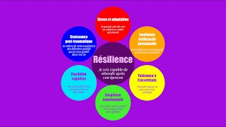Présentation du Projet Résilience UQAM