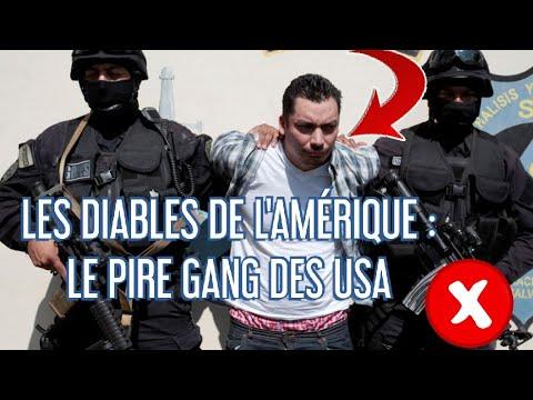 REPORTAGE CHOC - GUERRES DES GANGS AUX ÉTATS-UNIS, DES CONFLITS PERMANENTS