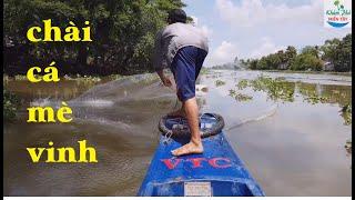 123 | Làm mồi đi chài cá mè vinh về bằm chả | Fishing