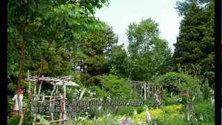 ✾森に囲まれたナチュラルガーデン✾ Natural garden surrounded by forest ♪♫