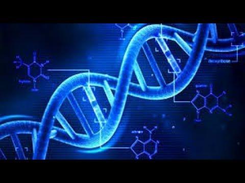 Eric Paul Dorman DNA