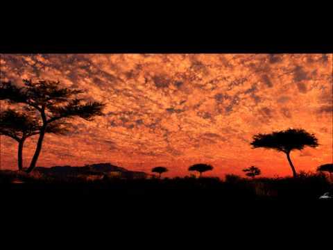 Panafrican Project-Kalahari Silence