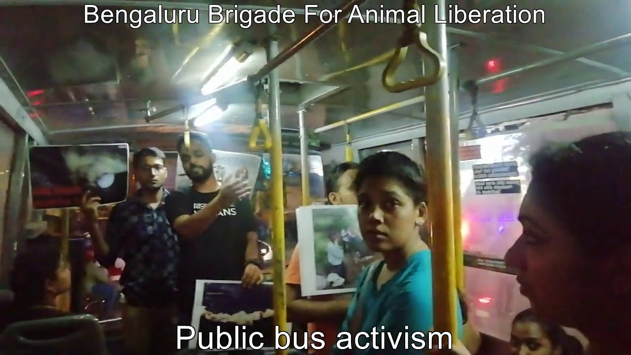 BMTC Bus Activism | Animal Rights