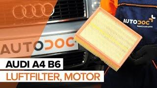 Byta Luftfilter on AUDI A4: verkstadshandbok