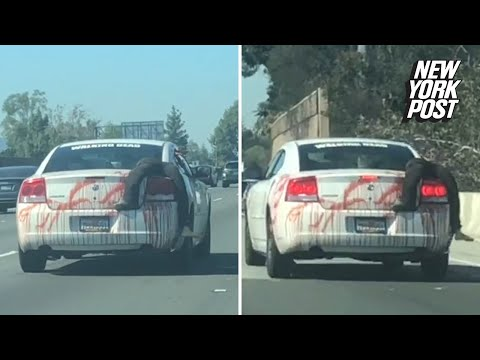 SHROOM - Car Decorated With Dead Body For Halloween [Video]