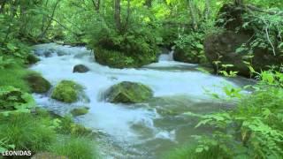 Liquid Mind - Letting Go (Dreaming Sleep Music)