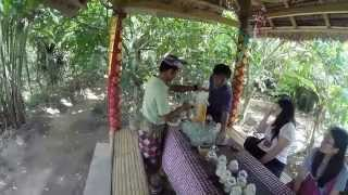 Luwak Coffee - Bali 2014