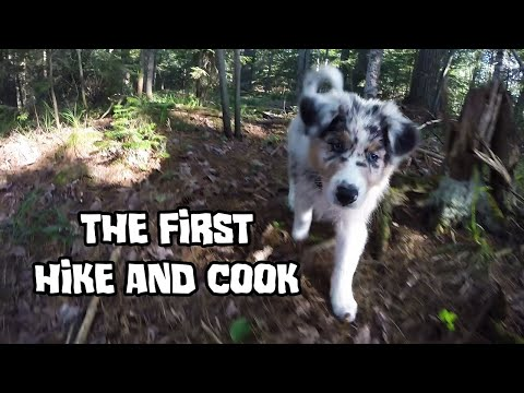 Hike and Cook  The Puppy Archives
