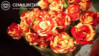 Обзор поставки: красно-желтые кустовые розы