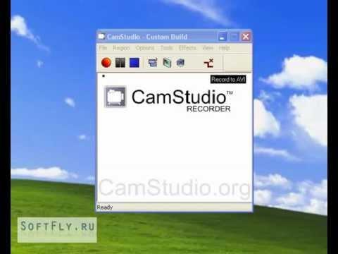 видео: Бесплатная программа для записи с экрана.softfly.ru