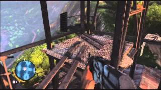 Far Cry 3 - Full Bars Guide