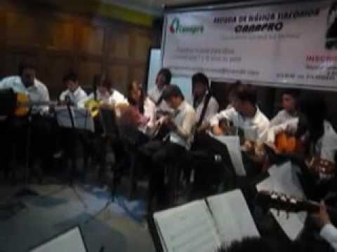 ESCUELA DE MUSICA CANAPRO MUESTRA FINAL GUITARRAS Y CLARINETES 03