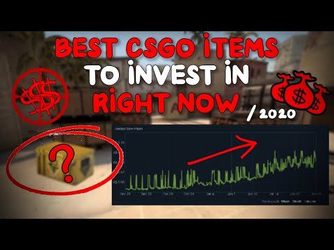 BEST CSGO ITEMS TO INVEST IN THIS YEAR (2020) - REALLY CHEAP!