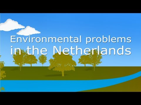 Environmental problems in the Netherlands through the years
