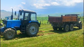 Трактор Беларус 89 против УРАЛ