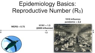 Epidemiology Basics:  Reproductive Number (R0)
