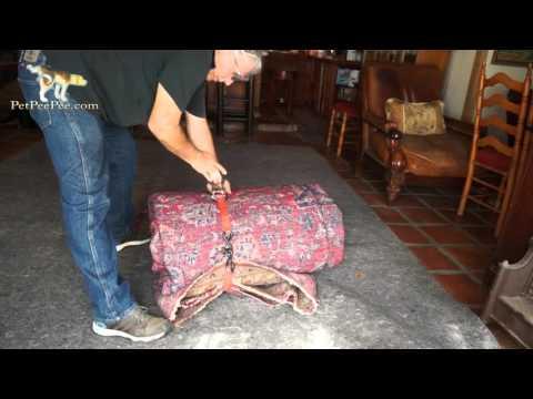 Folding big rug for shipping to Pet Pee Pee