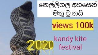 Kandy Kite Festival (නයාගෙ දිග.නුවර කොල්ලො සරුන්ගල් අරින විදිහ) Sv News Lanka