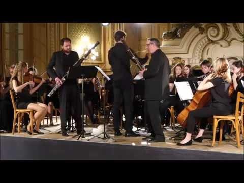 Ritter. Symphonie concertante. Julien Hardy/Gilbert Audin.
