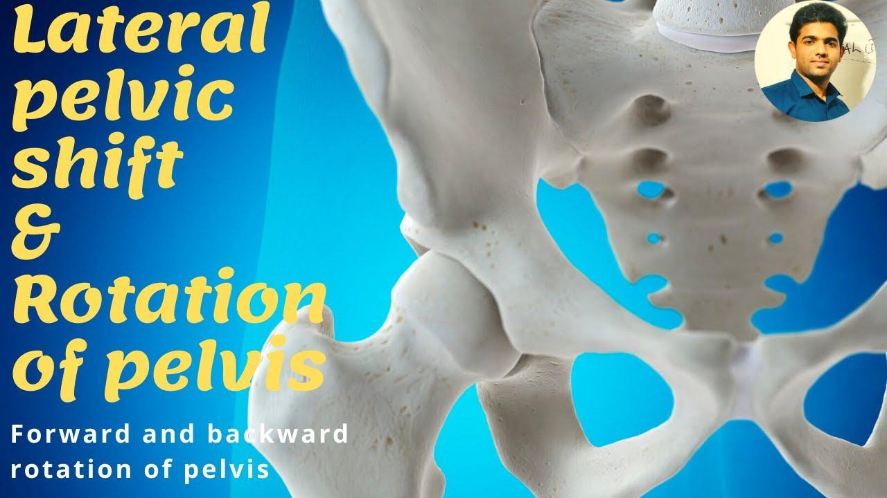 11++ Backward rotation of pelvis ideas in 2021