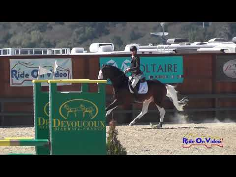 106S James Alliston on Cassio's Picasso Open Training Show Jumping Woodside August 2017