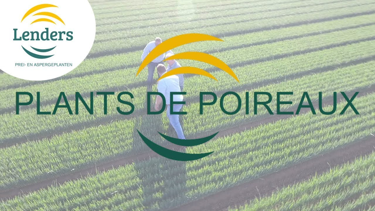 Lenders BV - Kessel 3 PLANTS DE POIREAUX [FRANCAIS] 2017 - YouTube