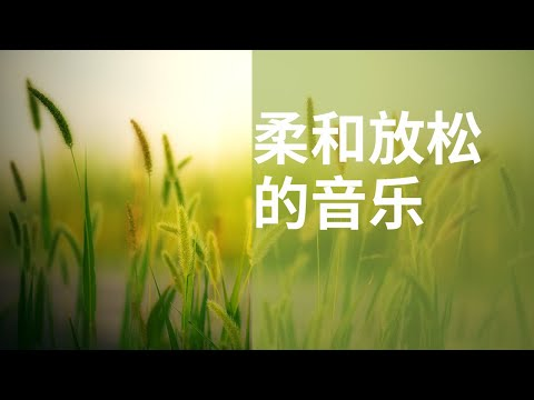 Soft Relaxing Music for meditation, yoga, loneliness, sleep, study and stress healing | Israfil