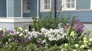 видео цветы в Череповце