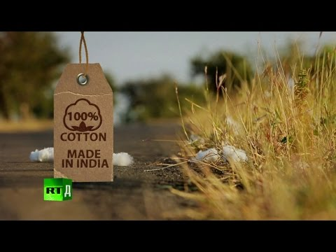 100% Cotton. Made in India: Farmers commit suicide after planting GMO cotton.