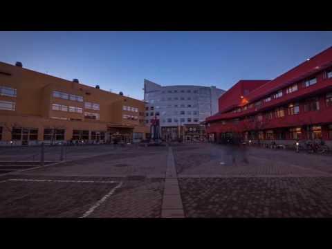 Beauty of Jönköping University, Sweden