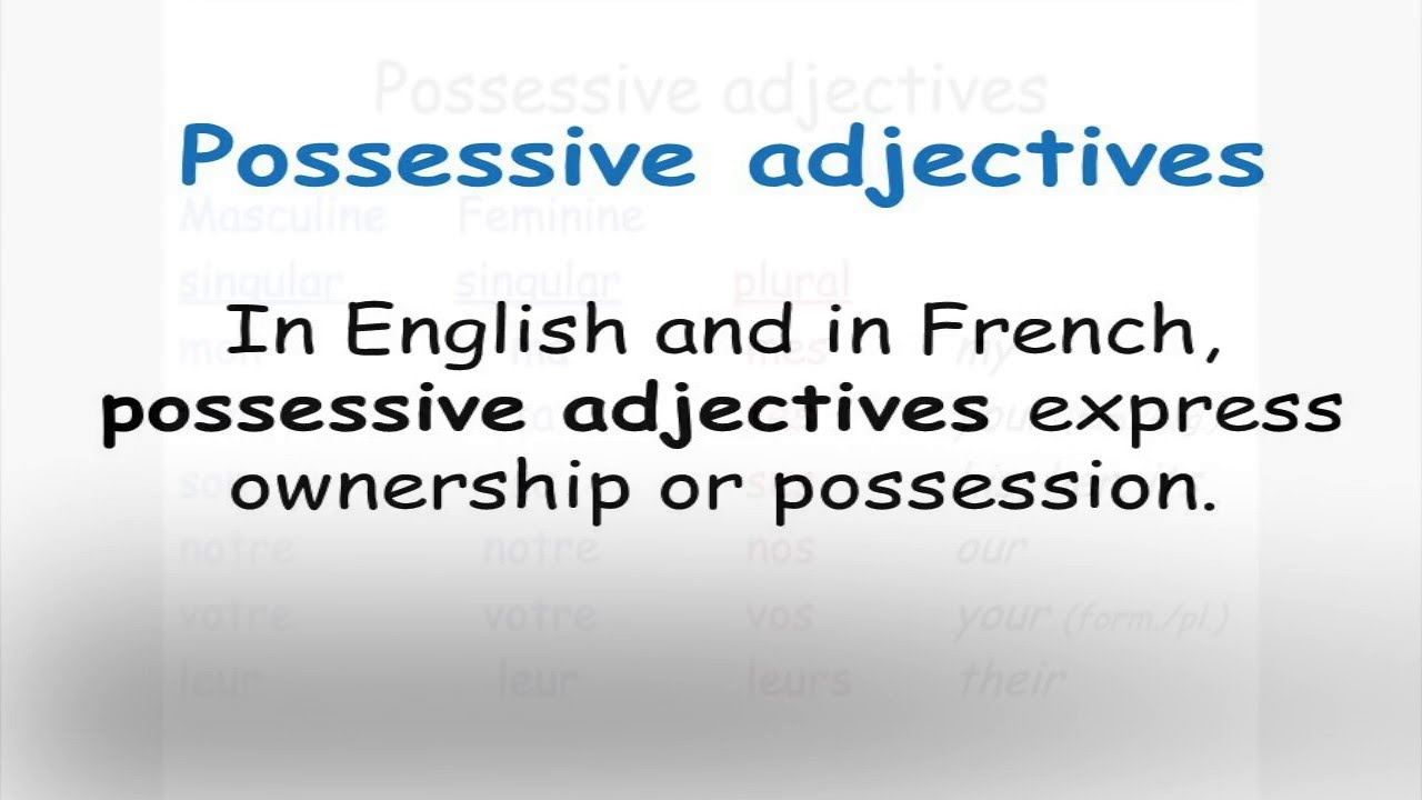 French Possessive Adjectives Song Youtube